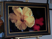 Custom Picture Framers - TurnKey Art Solutions